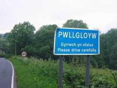 GW slow.jpg